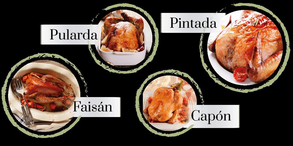 carne-aves-gastronomicas-aeropic-urgasa